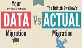 Man v Bird : Data Migration